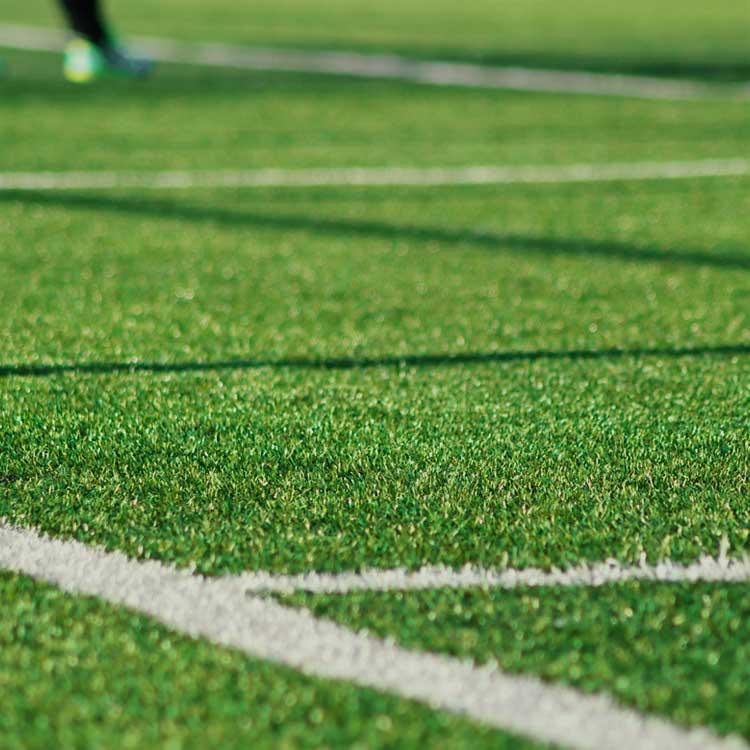 Artificial Pet Grass Tampa